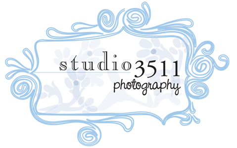 Studio 3511 Photography: Oahu Photographer
