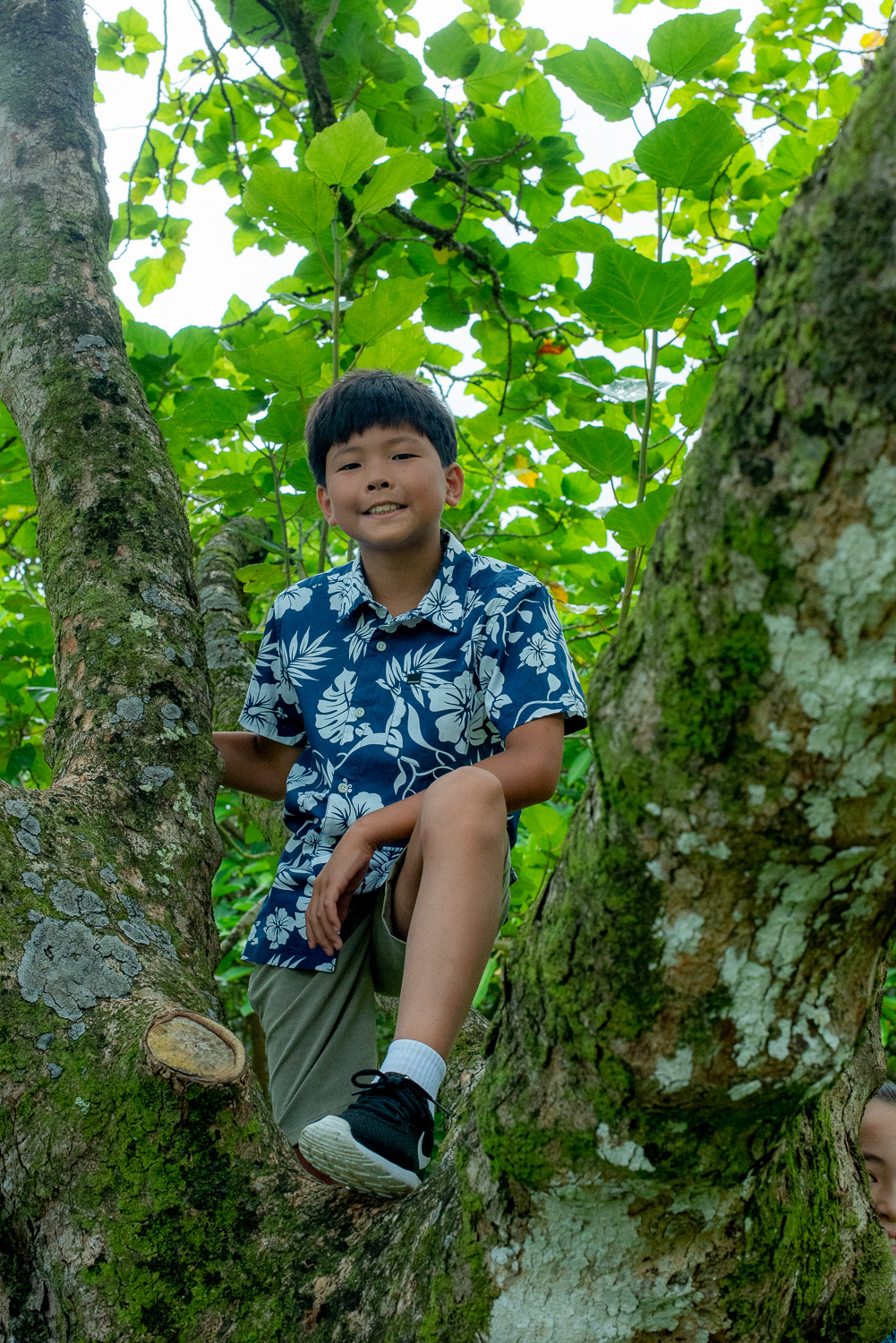 Boy hanging out in tree
