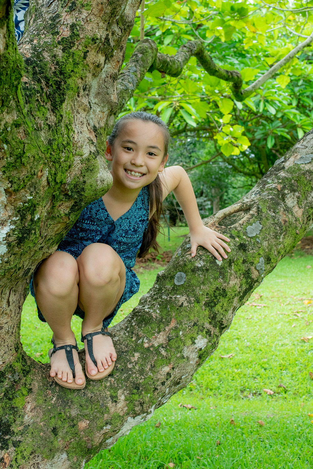 Girl in blue hanging out in tree