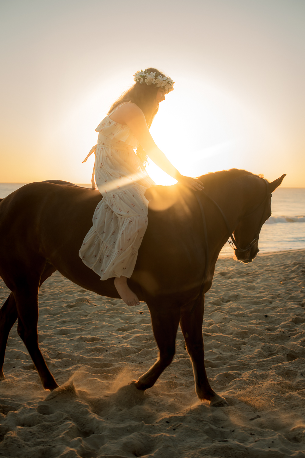 Sunrise with girl on horse at beach
