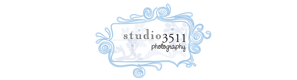 Studio 3511 Photography: Oahu Photographer logo